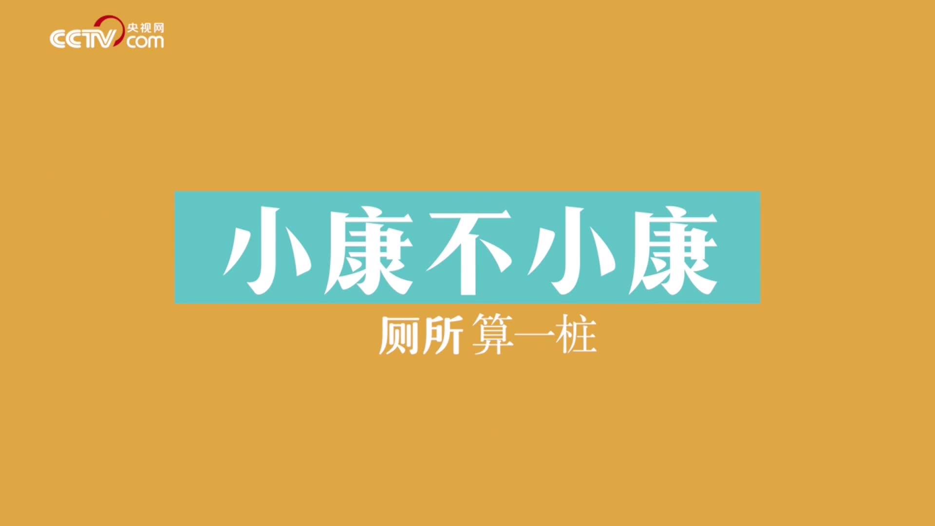 【中国微故事两会策划·中国正美好】小康不小康厕所算一桩