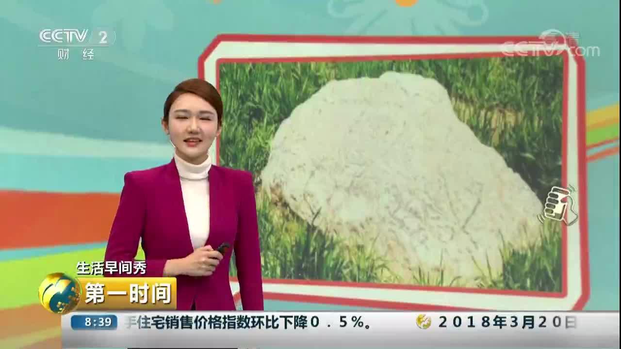 [视频]戳中萌点!全国最小的山 高度不足1米