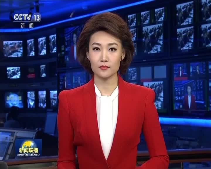 [视频]【在习近平新时代中国特色社会主义思想指引下——代表委员议国是】凝心聚力新时代 团结奋斗谱新篇
