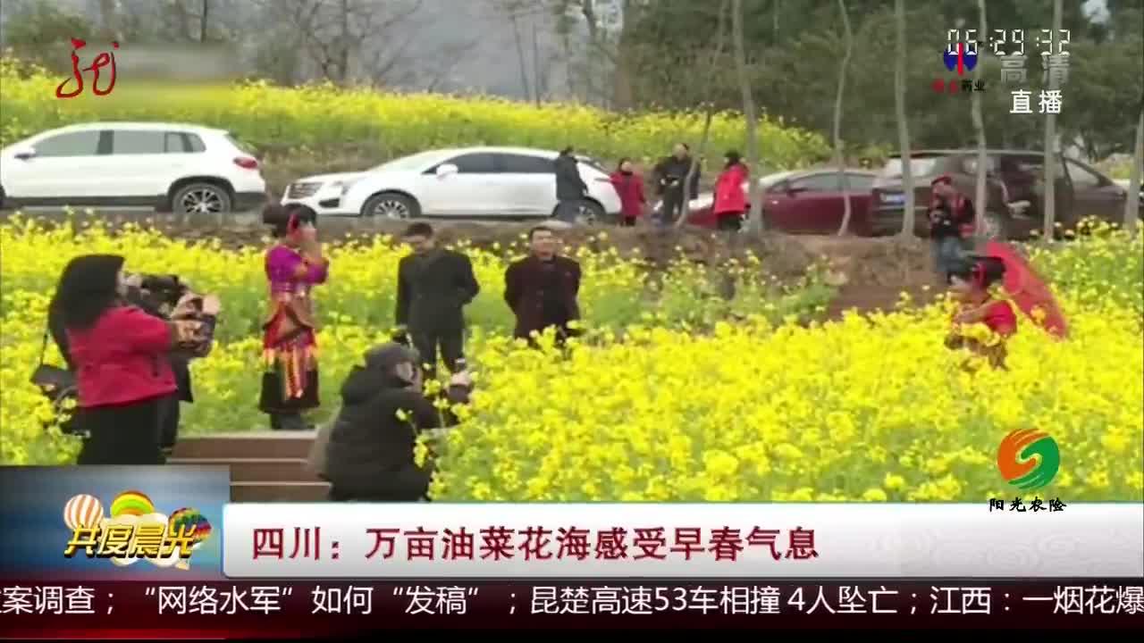 [视频]四川:万亩油菜花海感受早春气息