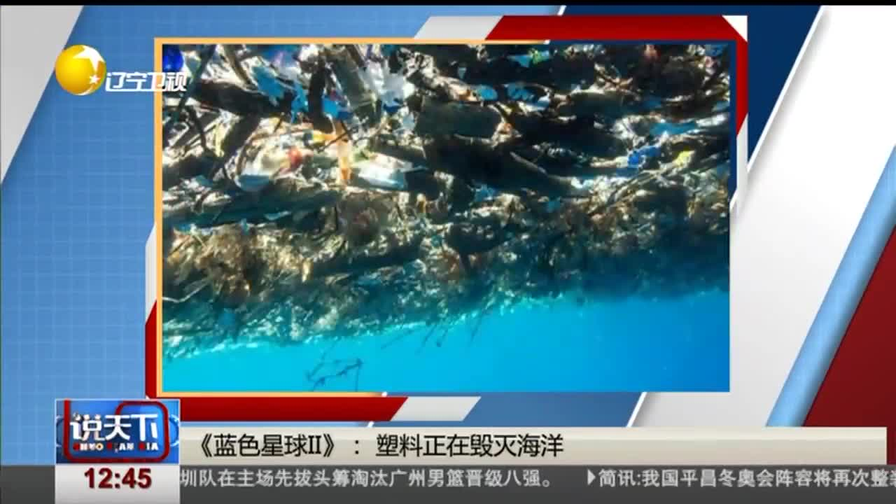 [视频]电影《蓝色星球II》:塑料正在毁灭海洋