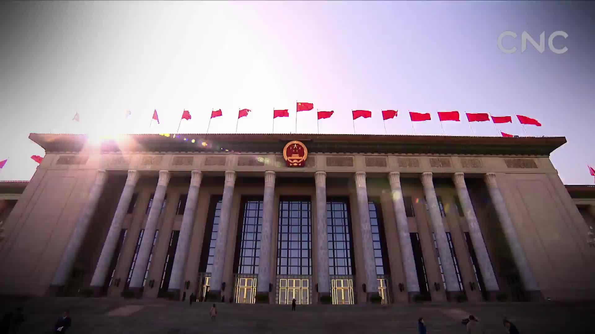 [视频]中国特色民主政治实用高效
