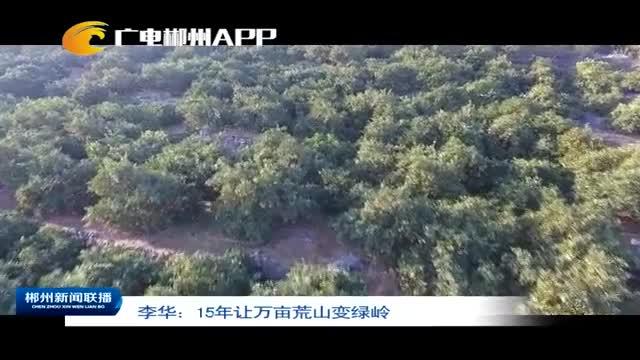 李华:15年让万亩荒山变绿岭