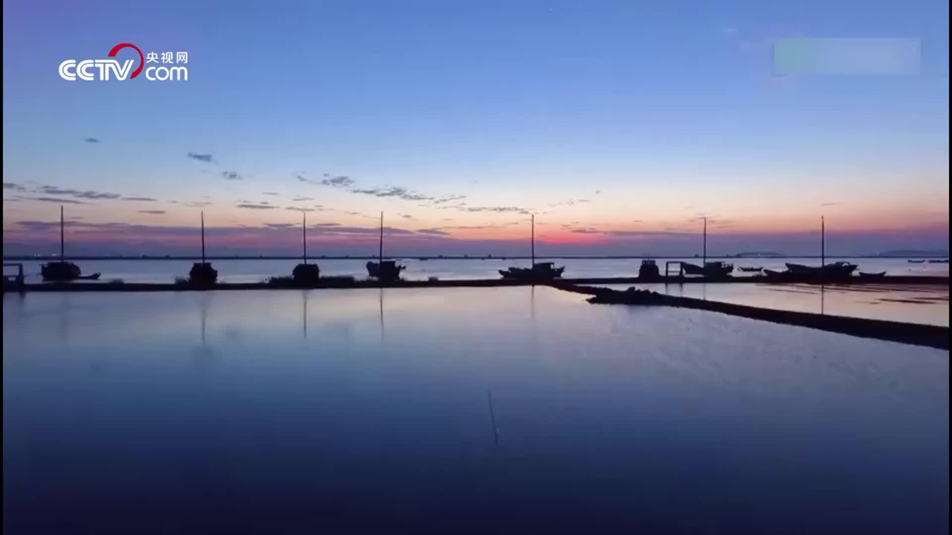 [视频]今日惊蛰 徐徐海风唤醒美好春天的早晨