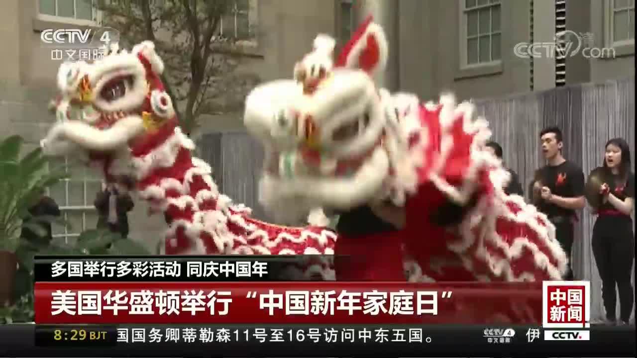 [视频]多国举行多彩活动 同庆中国年