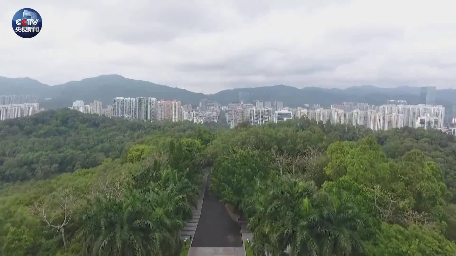 原创时政微视频丨从深圳到雄安