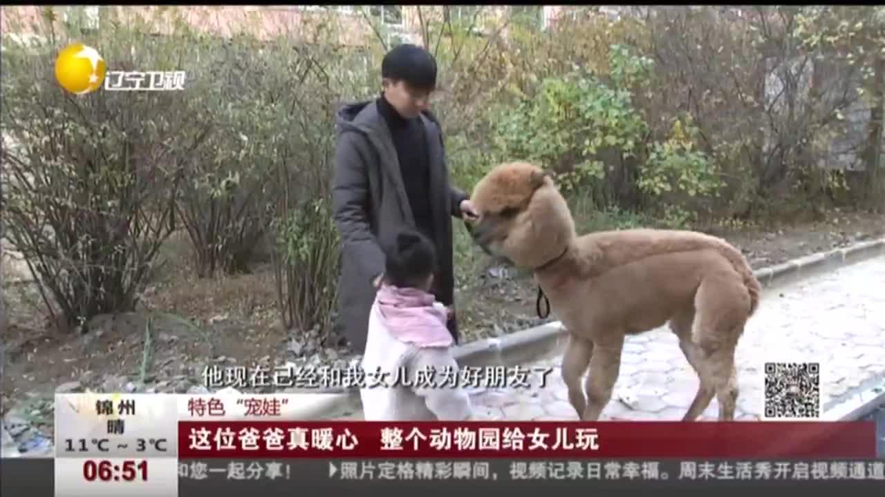 """[视频]特色""""宠娃"""" 这位爸爸真暖心 整个动物园给女儿玩"""