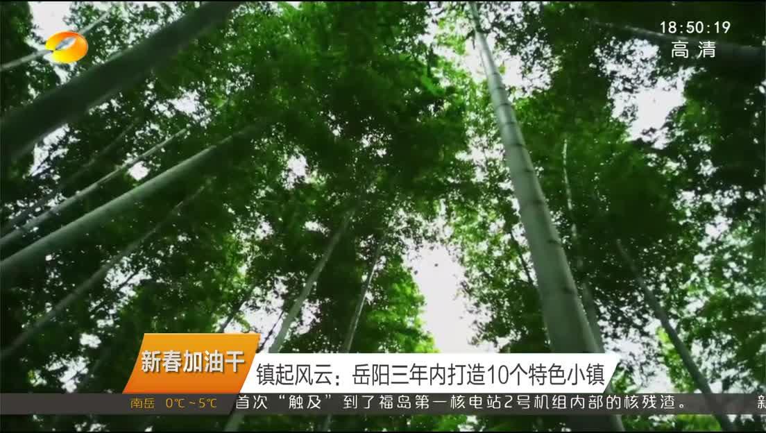 2019年02月14日湖南新闻联播