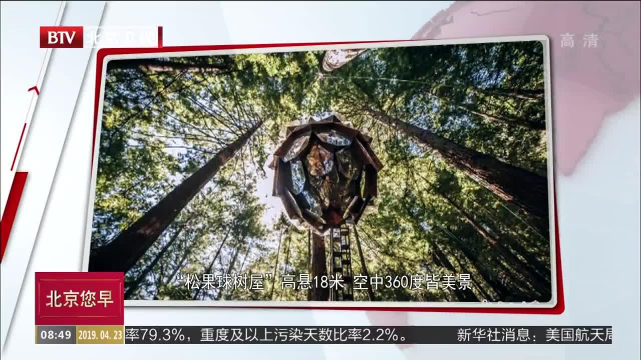 """[视频]""""松果球树屋""""高悬18米 空中360度皆美景"""