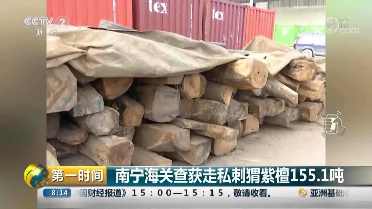 [视频]南宁海关查获走私刺猬紫檀155.1吨