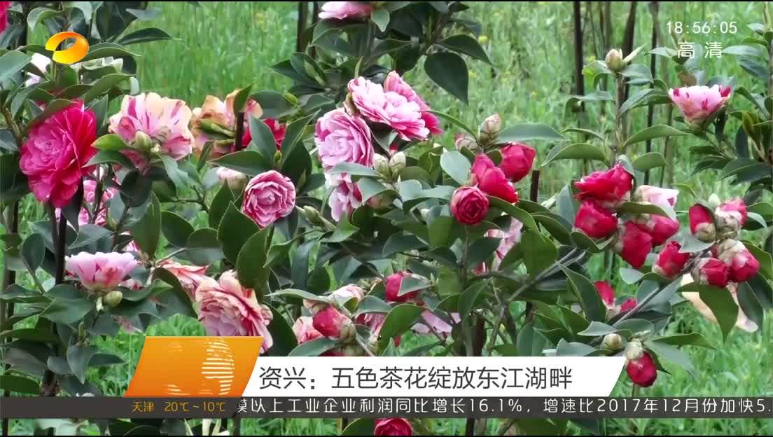 2018年03月28日湖南新闻联播