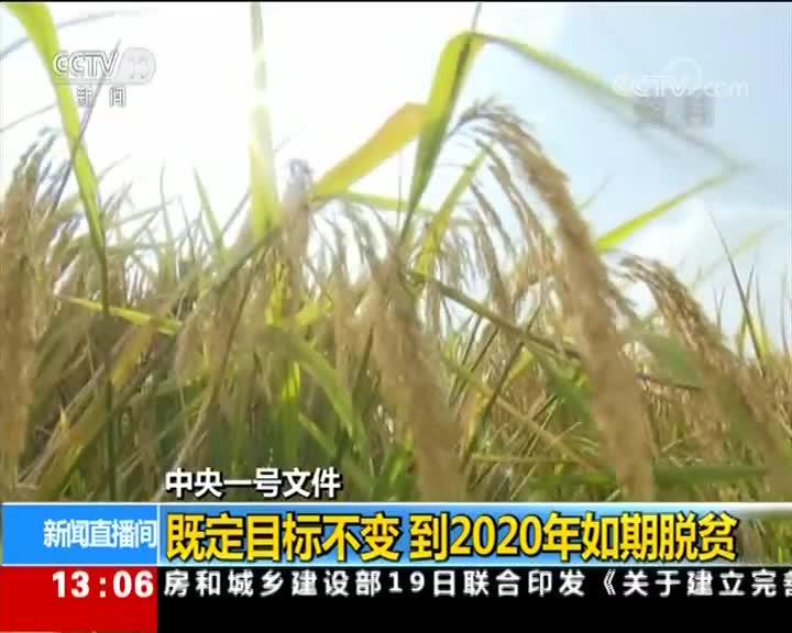 [视频]中央一号文件发布 看乡村如何振兴