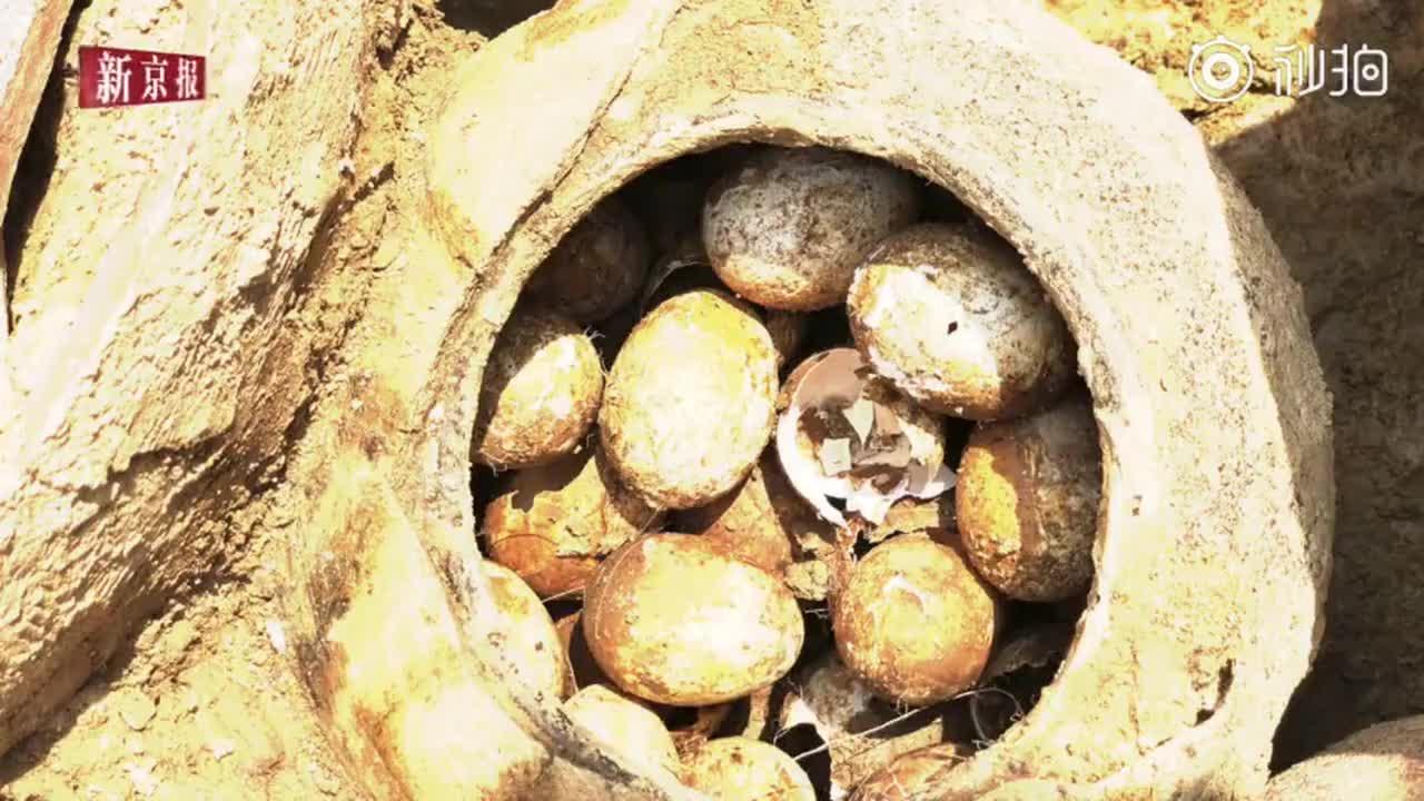[视频]2500多年墓葬里挖出春秋时期鸡蛋 大部分完好无损