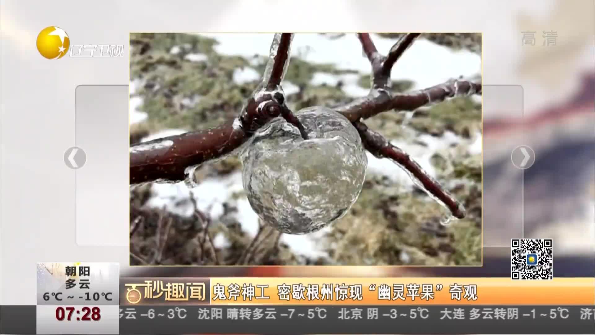 """[视频]鬼斧神工 密歇根州惊现""""幽灵苹果""""奇观"""