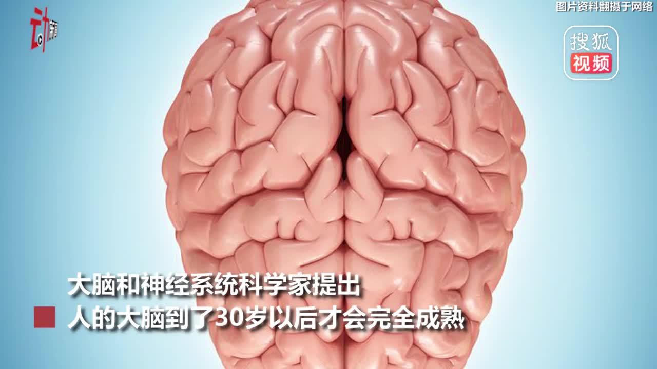 [视频]科学家称人类大脑30岁才算成熟 网友:18岁的我还是个宝宝