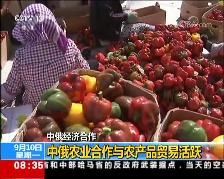[视频]中俄经济合作 中俄农业合作与农产品贸易活跃