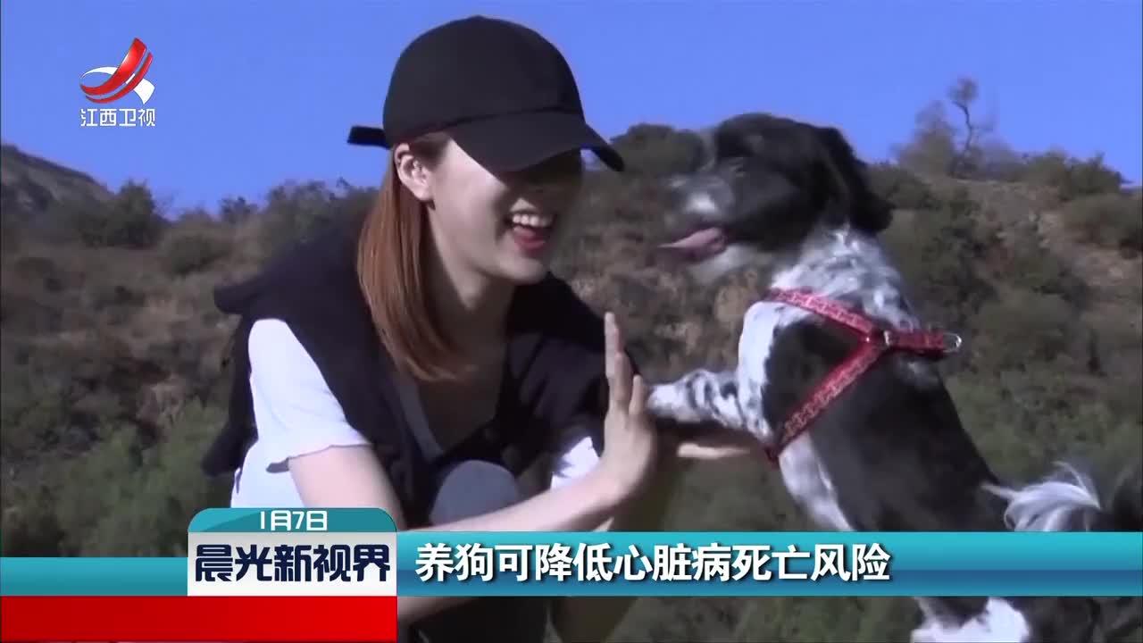 [视频]养狗可降低心脏病死亡风险