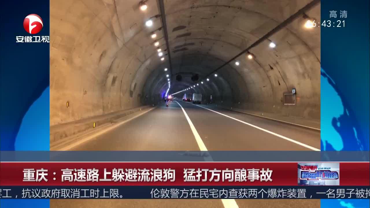 [视频]重庆:高速路上躲避流浪狗 猛打方向酿事故