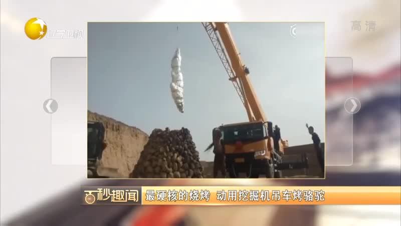 [视频]最硬核的烧烤 动用挖掘机吊车烤骆驼