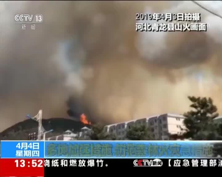 [视频]多地加强措施 防范森林火灾