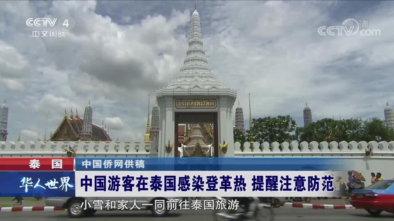 [视频]中国游客在泰国感染登革热 提醒注意防范