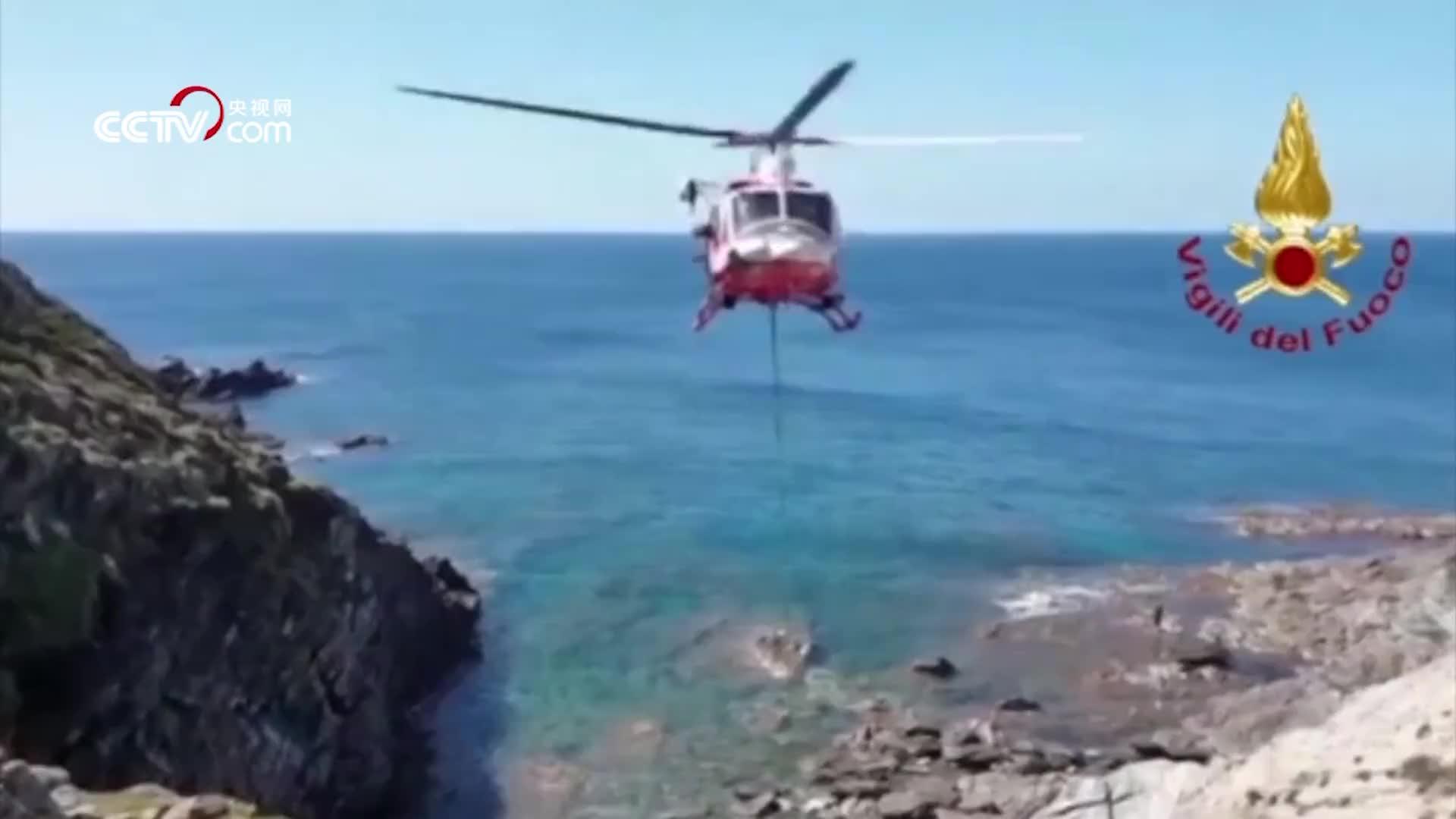 [视频]奶牛飞上天!意大利消防员全力营救奶牛