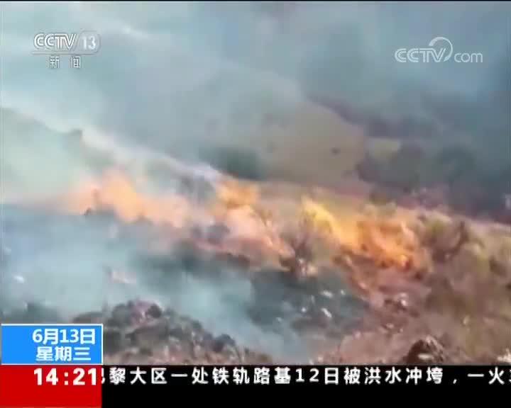 [视频]玻利维亚:森林火灾致上百公顷土地被毁