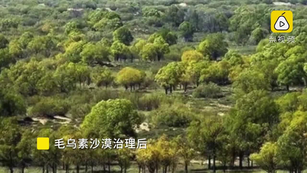 [视频]中国治沙奇迹:用60年把沙漠变绿洲