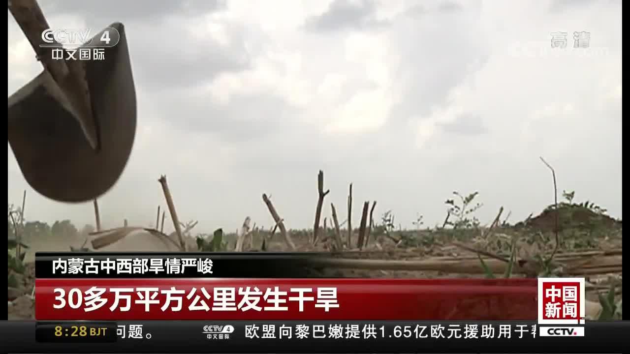 [视频]内蒙古中西部旱情严峻
