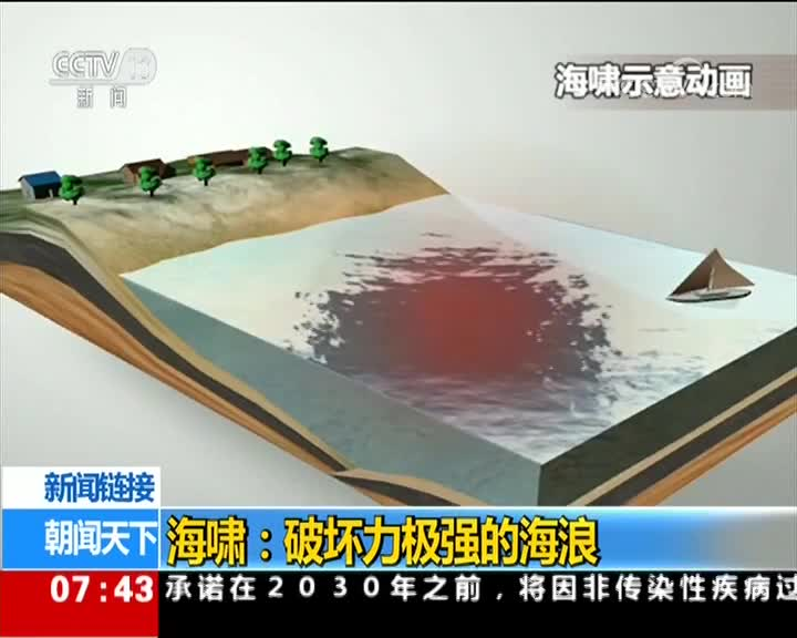 [视频]新闻链接 海啸:破坏力极强的海浪