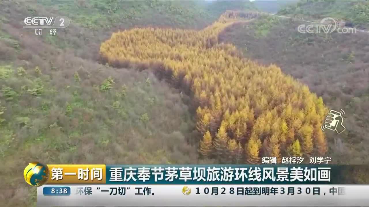 [视频]重庆奉节茅草坝旅游环线风景美如画