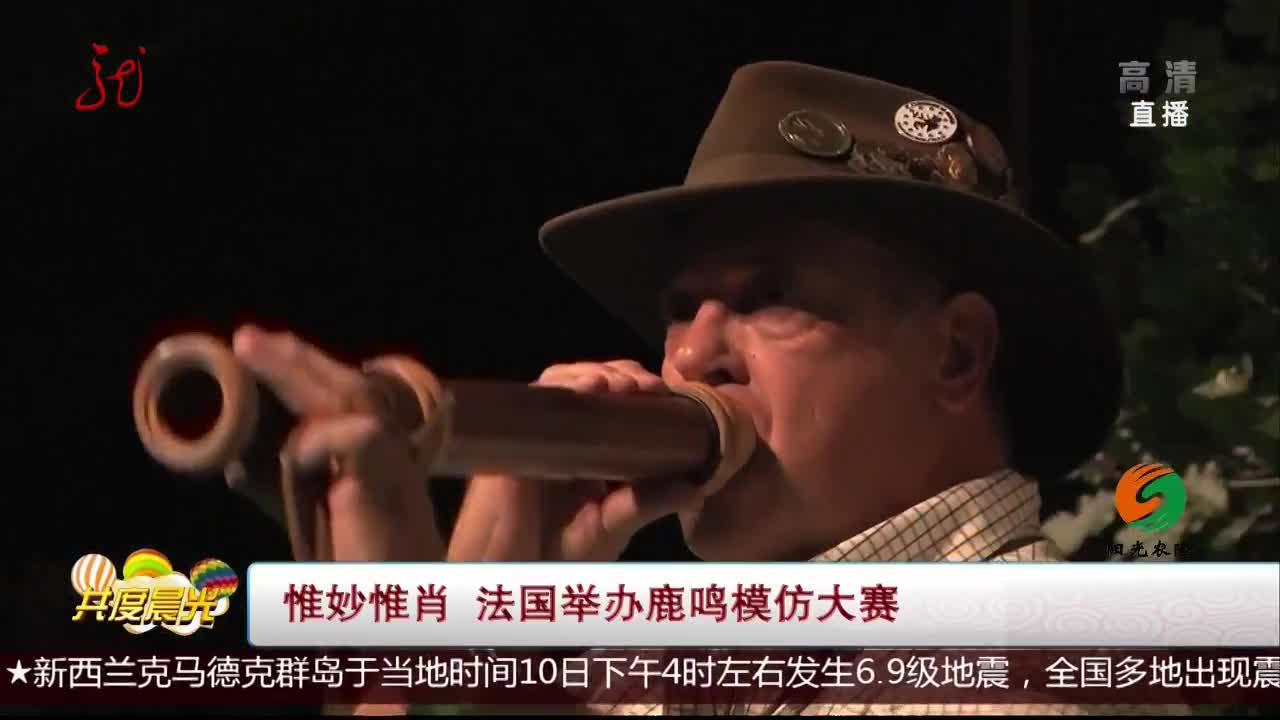 [视频]惟妙惟肖 法国举办鹿鸣模仿大赛