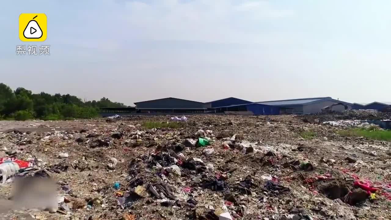 [视频]中国禁洋垃圾后,澳洲回收系统崩了