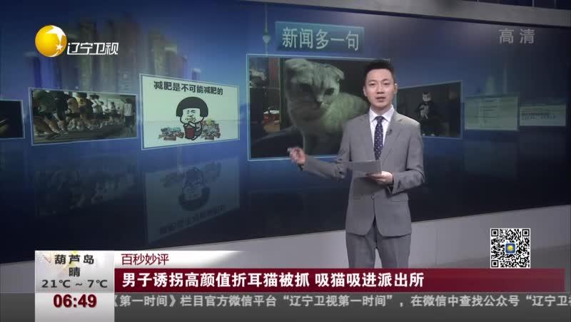 [视频]男子诱拐高颜值折耳猫被抓 吸猫吸进派出所