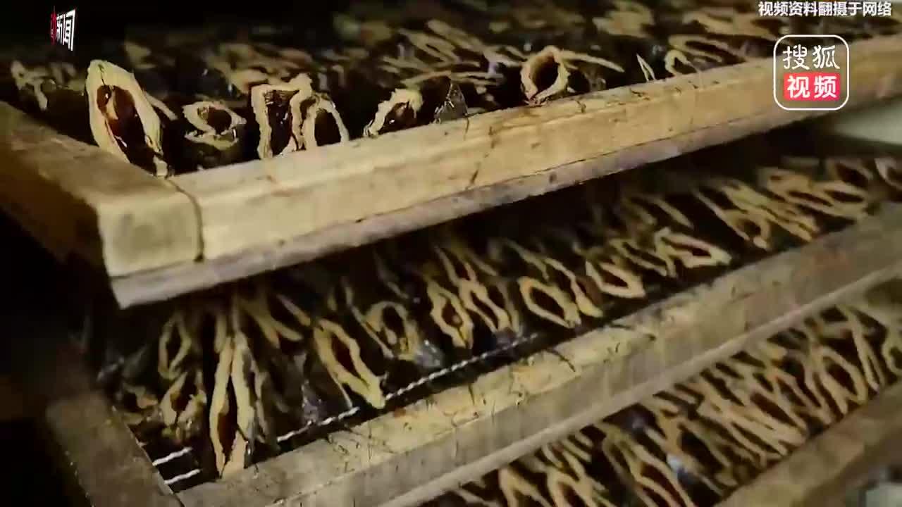 [视频]动画科普:吃槟榔到底会不会得口腔癌?