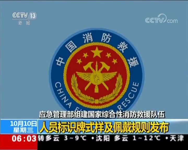 [视频]应急管理部 组建国家综合性消防救援队伍