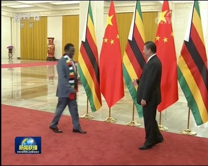 [视频]习近平会见津巴布韦总统