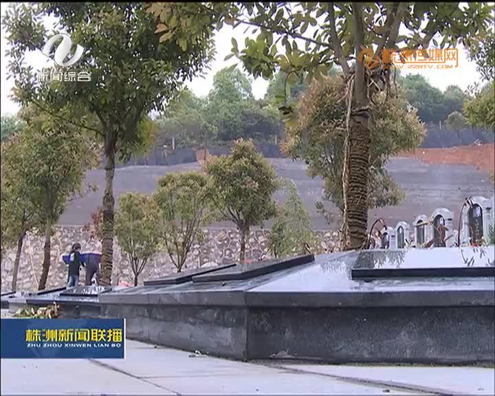 绿色殡葬:醴陵96个树葬墓穴清明节后启用