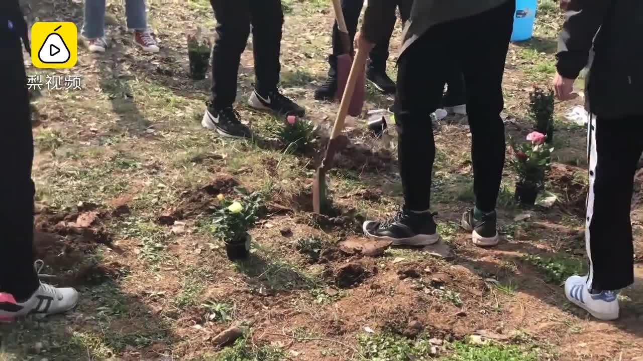 [视频]校园划出责任田 学生承包种花卉