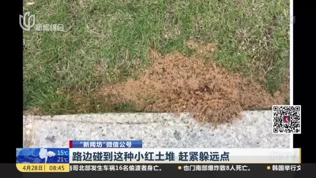 [视频]路边碰到这种小红土堆 赶紧躲远点