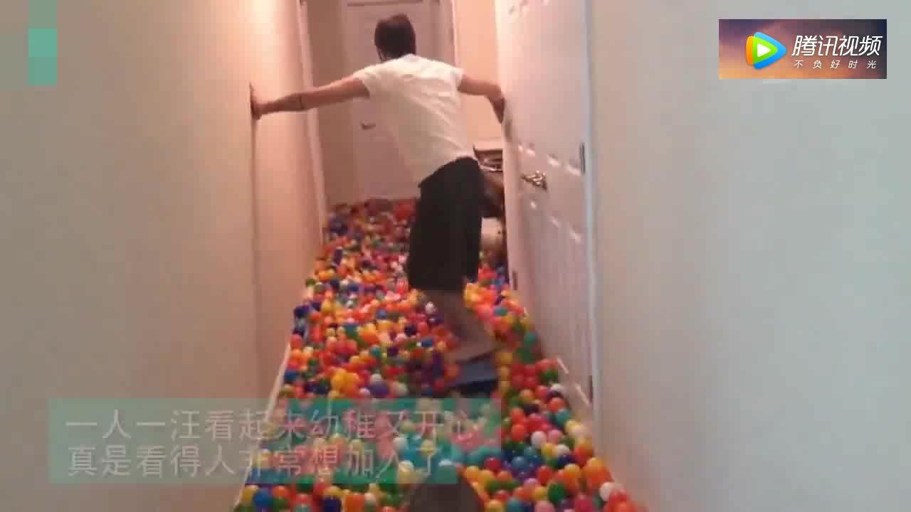 """[视频]一只拥有5000个海洋球的""""快乐男孩"""""""