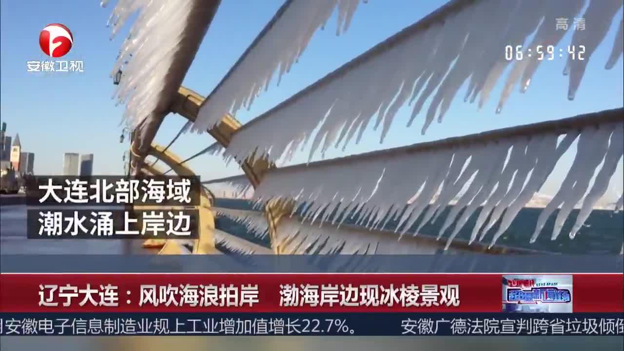[视频]辽宁大连:风吹海浪拍岸 渤海岸边现冰棱景观