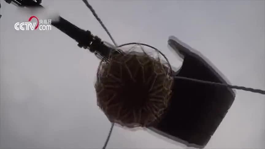 [视频]难以置信! 四级军士长表演挖掘机灌篮绝技: 全程仅需20秒