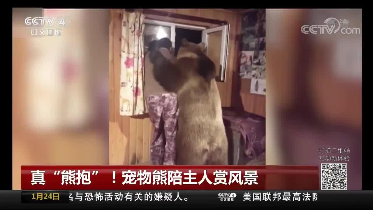 """[视频]真""""熊抱""""!宠物熊陪主人赏风景"""
