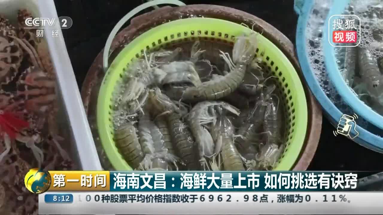[视频]海鲜大量上市 如何挑选有诀窍