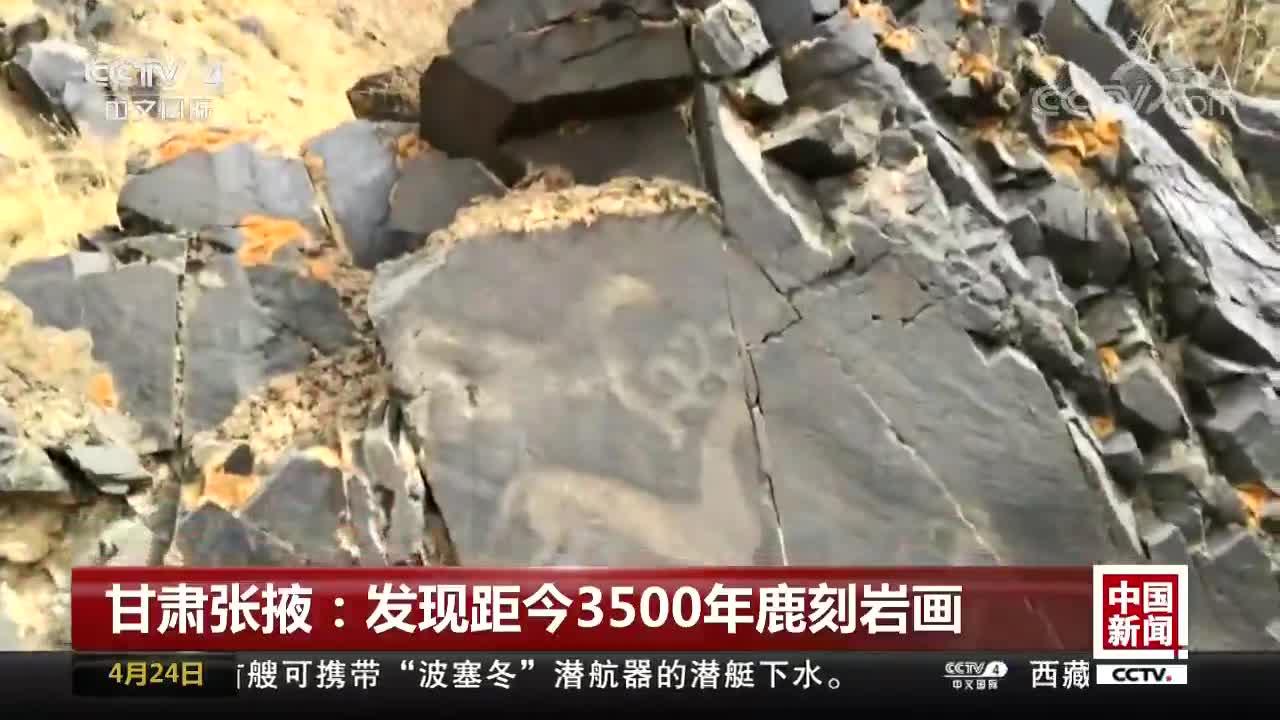 [视频]甘肃张掖:发现距今3500年鹿刻岩画