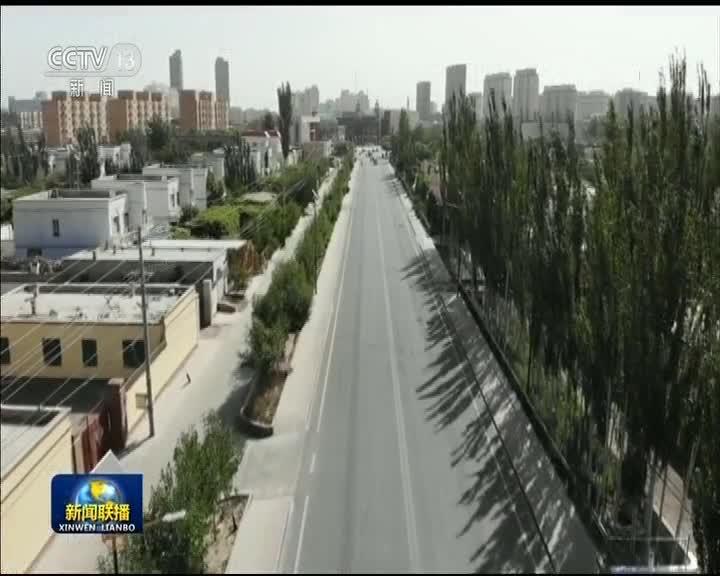 [视频]新疆达西村:民族团结促发展 盐碱地变成小康村