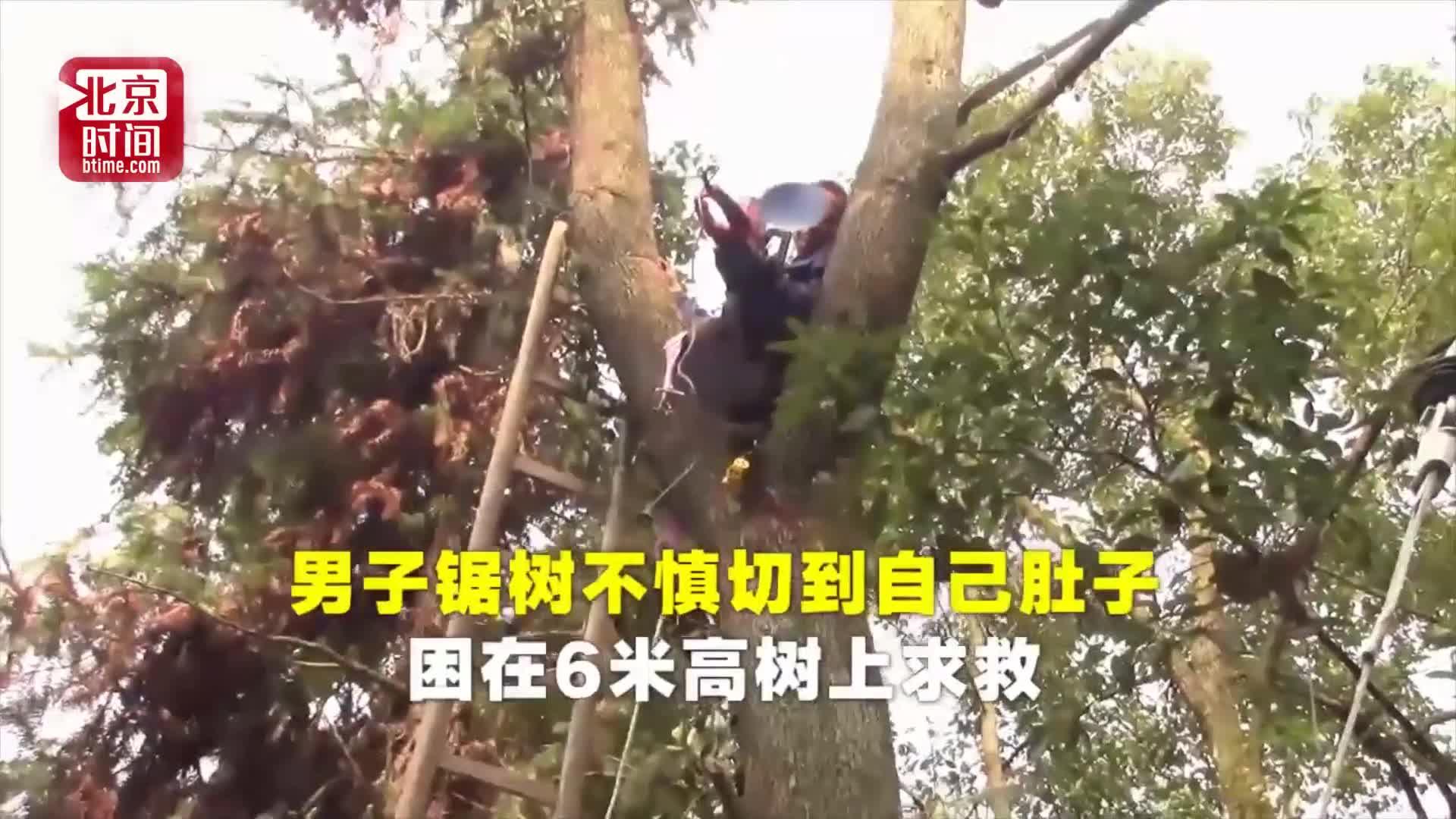 [视频]男子锯树不慎切到自己肚子 困在六米高树上求救