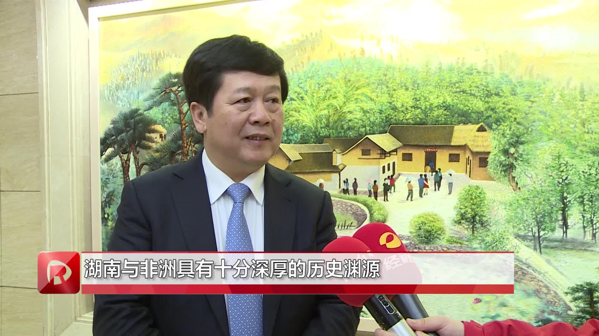 徐湘平厅长在第一届中非经贸博览会推介会现场接受红网专访