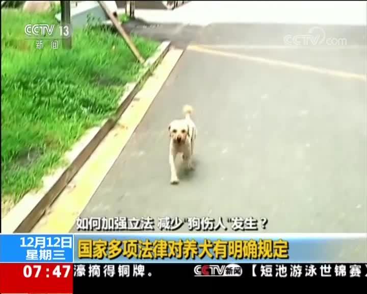 """[视频]如何加强立法 减少""""狗伤人""""发生?"""